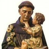 Immagine dell'Editoriale del parroco Festa della Lingua di S. Antonio