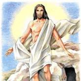 Immagine dell'Editoriale del parroco del giorno 24 aprile 2011