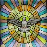 Immagine dell'Editoriale del parroco del giorno 27 gennaio 2013